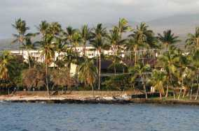 Multifamily on Alii Drive