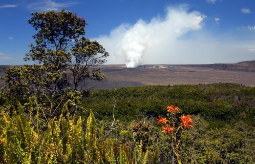 Volcano in Hawaii Steam rising