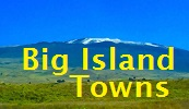 Big Island Towns Blog