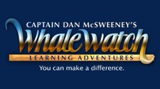 Kona Coast Whale Watching Excursions Captain Dan