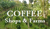 Kona Coffee Shops and Farms tours COFFEE TASTING