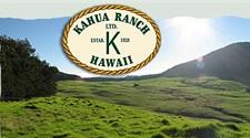 Kahua Ranch Horback riding tours on Hawaii Big Island