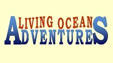 Kailua Kona Living Ocean Adventures Hawaii