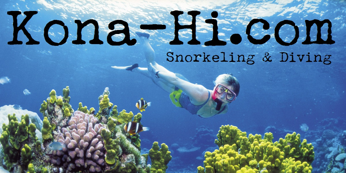 Snorkeling and Scuba Diving Guided Tours and Charters in Kailua Kona Hawaii
