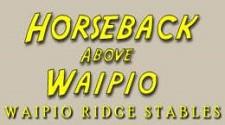 Honokaa Horseback riding Waipio Ridge Stables