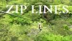 Zip Lines