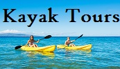 Kayak tours and rentals