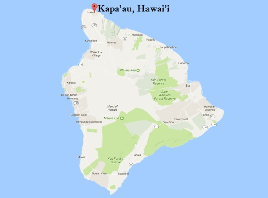 Map of Kapa'au, Hawaii