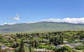Village community