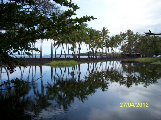 Brackish water pond