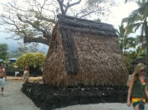 Shelter Grass Hut