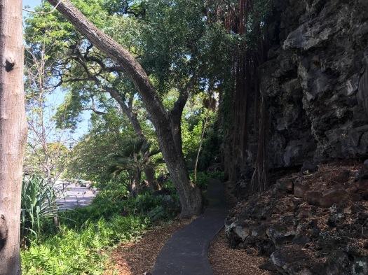 marina trail
